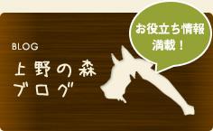 上野の森ブログ
