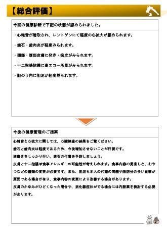 健康診断検査結果報告書3